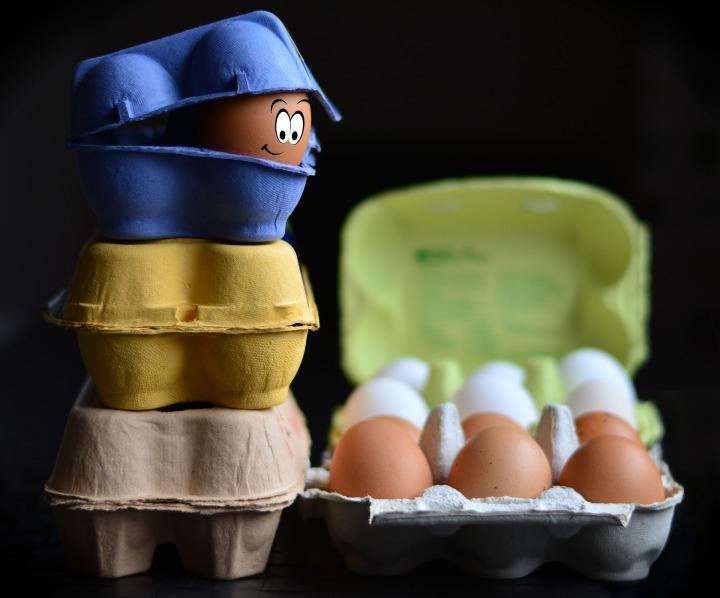 egg-cartons-3253299_1920